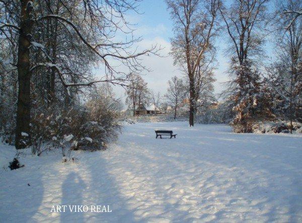 Проект «Чаковицкий парк»